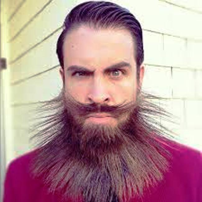 barba batteri