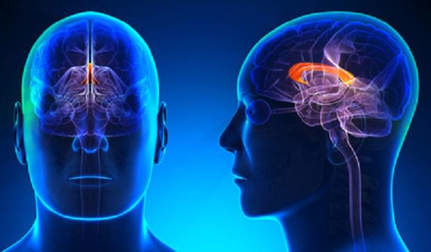 malattie-degenerative-del-cervello-un-collirio