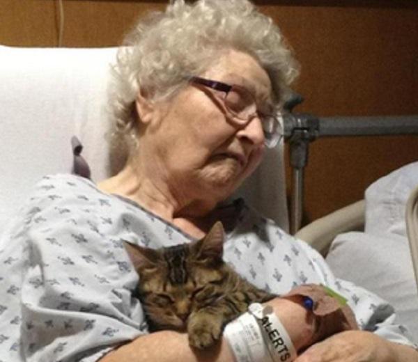 anziani-e-animali-domestici