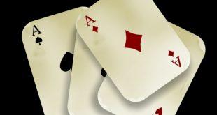 Poker, Google fa giocare i cani per combattere il bullismo nei mondi virtuali